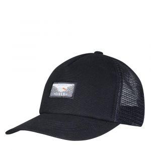 AUXIER CAP
